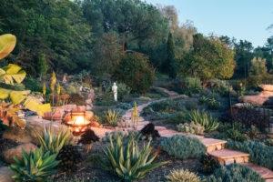 Natural Walkway and Garden